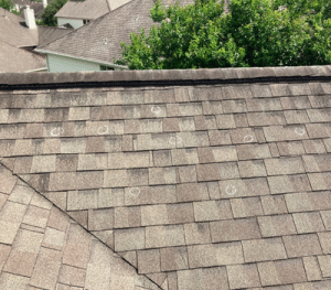 Roof Replacement near Pecan Grove