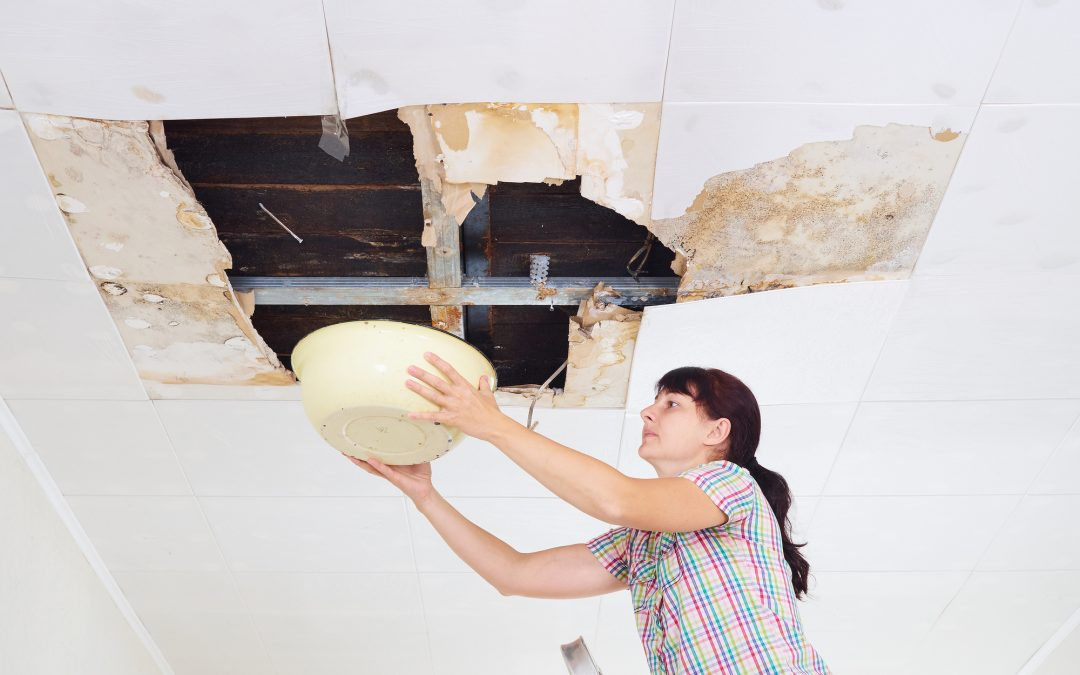 Is Your Roof Leaking? Everything You Need to Know