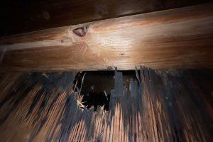Roof Hail Damage inside home