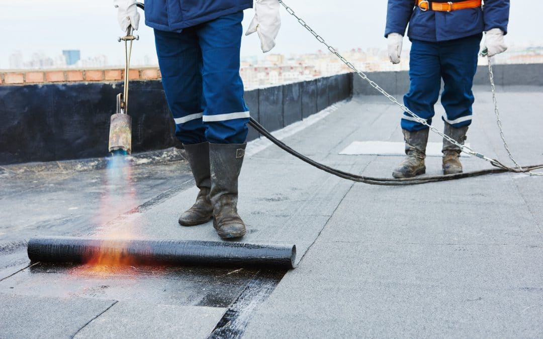 5 Things To Know About Commercial Roofing Replacement